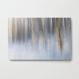 Winter Impressions Metal Print