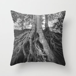The Root Tree in Greenville, SC Throw Pillow