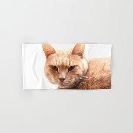 Red cat watching Hand & Bath Towel