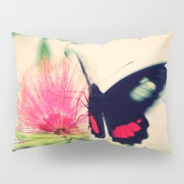 little beauty Pillow Sham