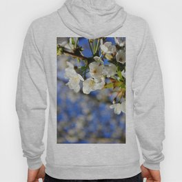 Blossoms in the Sun Hoody
