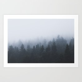 Mysterious forest in the fog Art Print