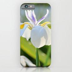 Gleamin' Iris Slim Case iPhone 6s