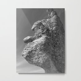 SHAPE OF A FACE ROCK Metal Print
