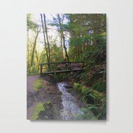 Bridge over water Metal Print