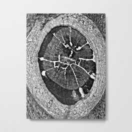 Black and White Tree Veining and Cracks Metal Print