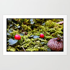 Tiny Forest Art Print