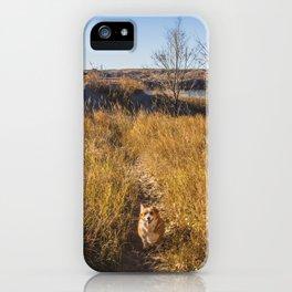 Lillie, Downstream Campground, North Dakota iPhone Case
