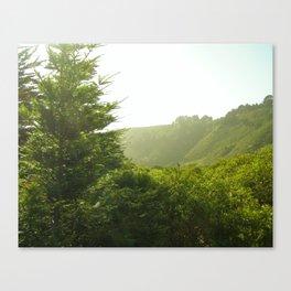 California Coast Trees II Canvas Print