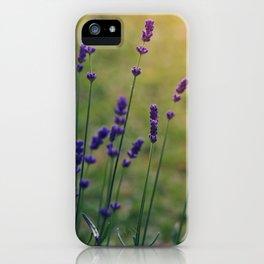 Field of Dreamflowers iPhone Case