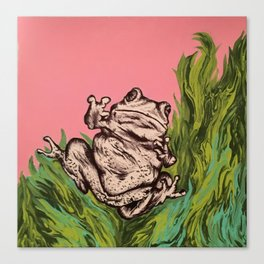 Frog in the weeds Canvas Print