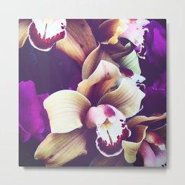 Velvet Purple Orchid II Metal Print