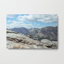 Rocky Mountain National Park Metal Print
