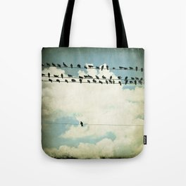 Many and One - photograph of birds on a line Tote Bag