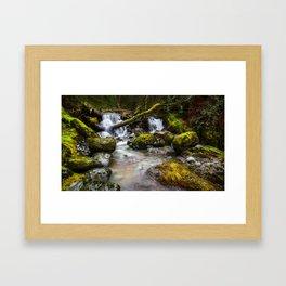 Enchaned forest Framed Art Print