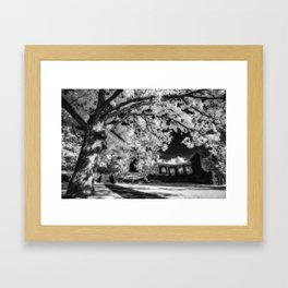 Powerful tree Framed Art Print