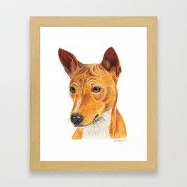 Basenji Framed Art Print