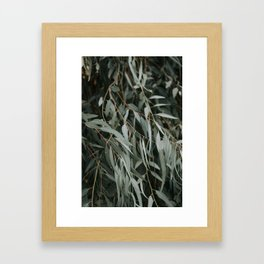 leaves ii Framed Art Print