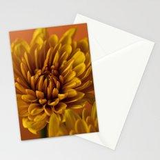 Orange Soda Stationery Cards