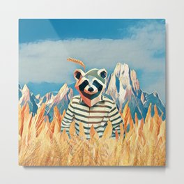 Raccoon in the wheat field Metal Print