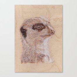 Meerkat Portrait - Drawing by Burning on Wood - Pyrography Art Canvas Print