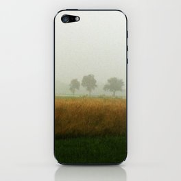 Brumes iPhone Skin