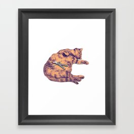 Home Is Where The Cat Is Framed Art Print