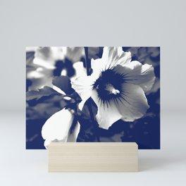 rose mallow Mini Art Print