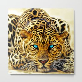 A blue eyes African tiger Metal Print