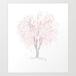 Cherry Blossom Sakura Matsuri Art Print