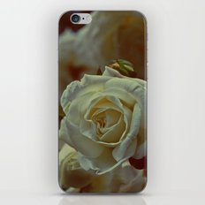 White Rose  iPhone & iPod Skin