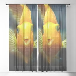 Funny goldgish Sheer Curtain