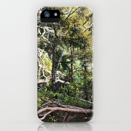 Be still! Look at me! iPhone Case