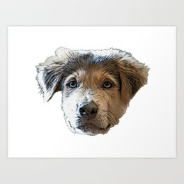 Dog Goberian Crossbreed designer dogs intentionally bred purebred Art Print