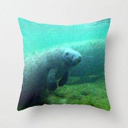 Watercolor Manatee 02, Three Sisters Spring, Crystal River, Florida Throw Pillow
