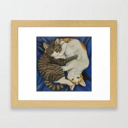 Yin yang kitties Framed Art Print