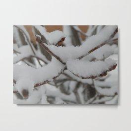 winter scene 6 Metal Print