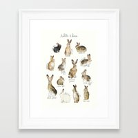 rabbits Framed Art Prints featuring Rabbits & Hares by Amy Hamilton