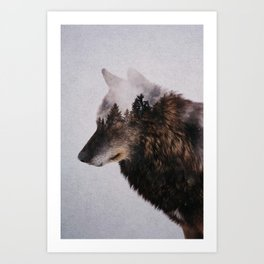 Canis Lupus Art Print