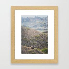 Vantage Framed Art Print