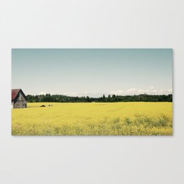 Yellow Road. Canvas Print