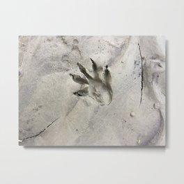 print in the mud Metal Print