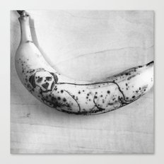 Dalmatian Dog on a Banana Canvas Print