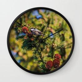 Bird on a spruce cone Wall Clock