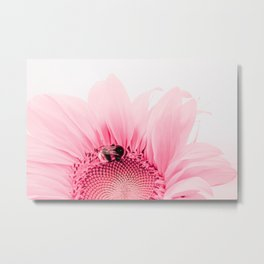 Pink Sunflower And A Bee Metal Print