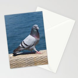 Pigeon2 Stationery Cards