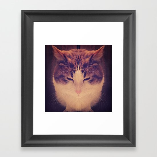 Symmetrical Feline Framed Art Print