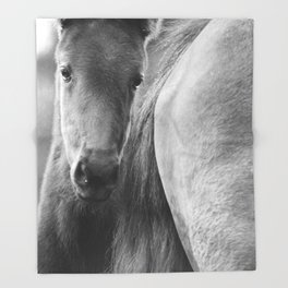 Original horses photo. Black & White, fine art, animal photography, landscape, b&w Throw Blanket
