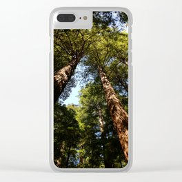 Sequioas Reaching  For The Sky Clear iPhone Case