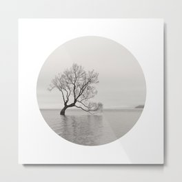 That Wanaka Tree Metal Print